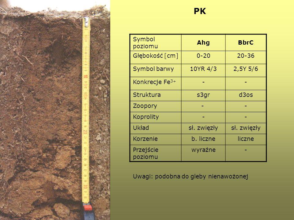 PK Symbol poziomu Ahg BbrC Głębokość [cm] 0-20 20-36 Symbol barwy